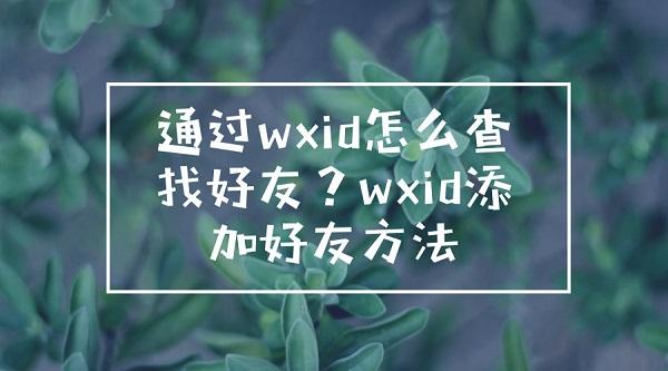 wxid加好友
